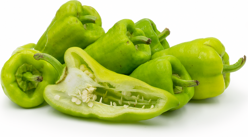 Beaver Dam Chile Peppers