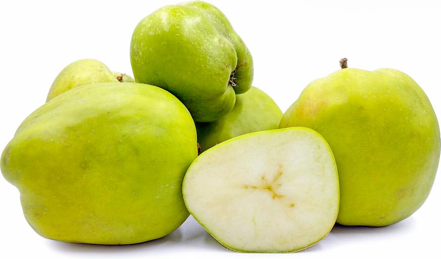 Pommes Catshead