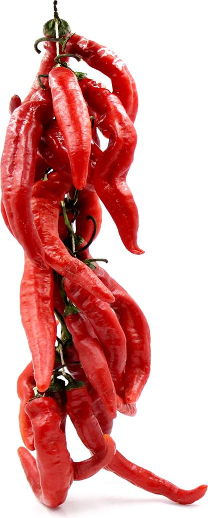 Cayenne chilei bors húr