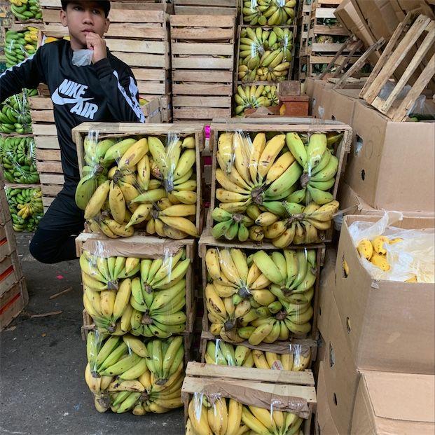 Île aux bananes