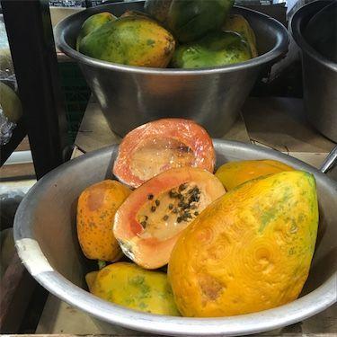 Kraljevske zvijezde papaje