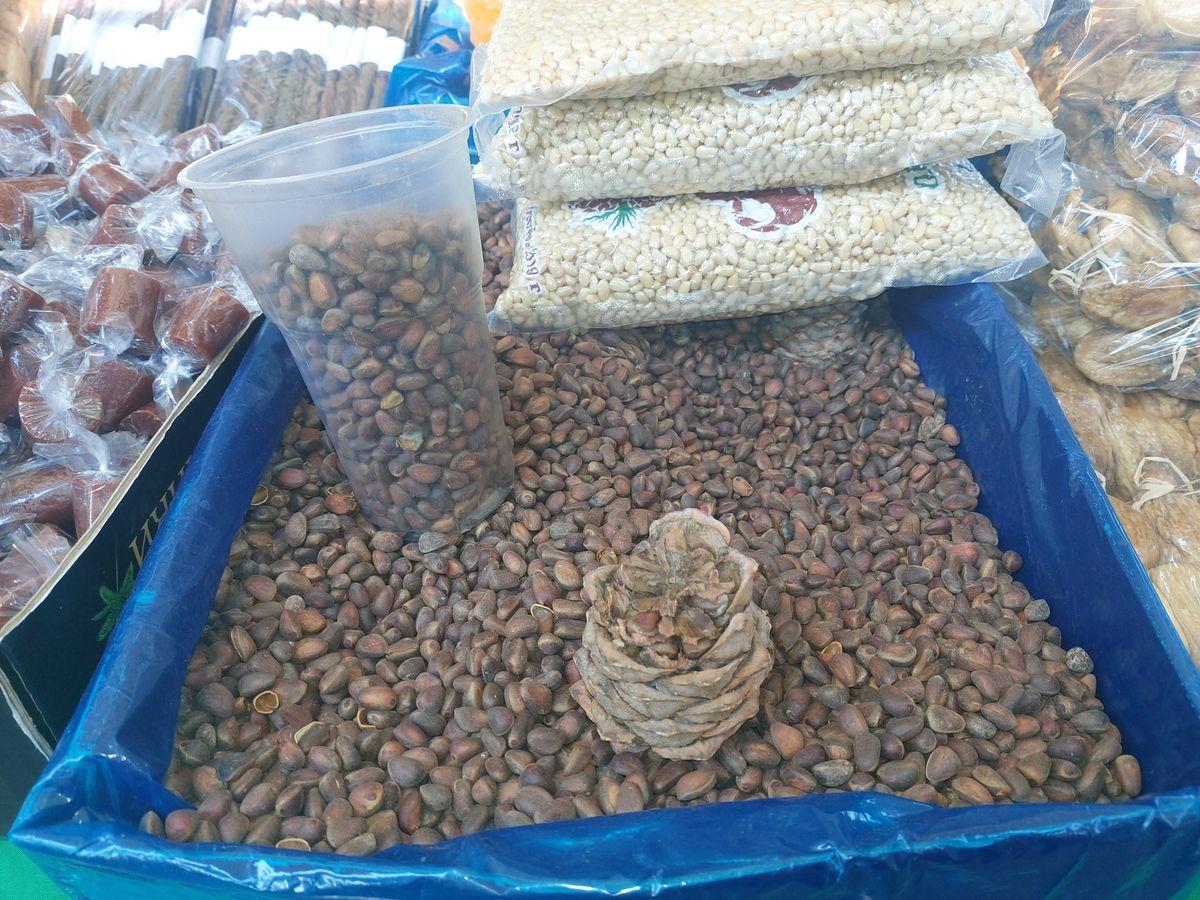 Ishranjeni pinjoli
