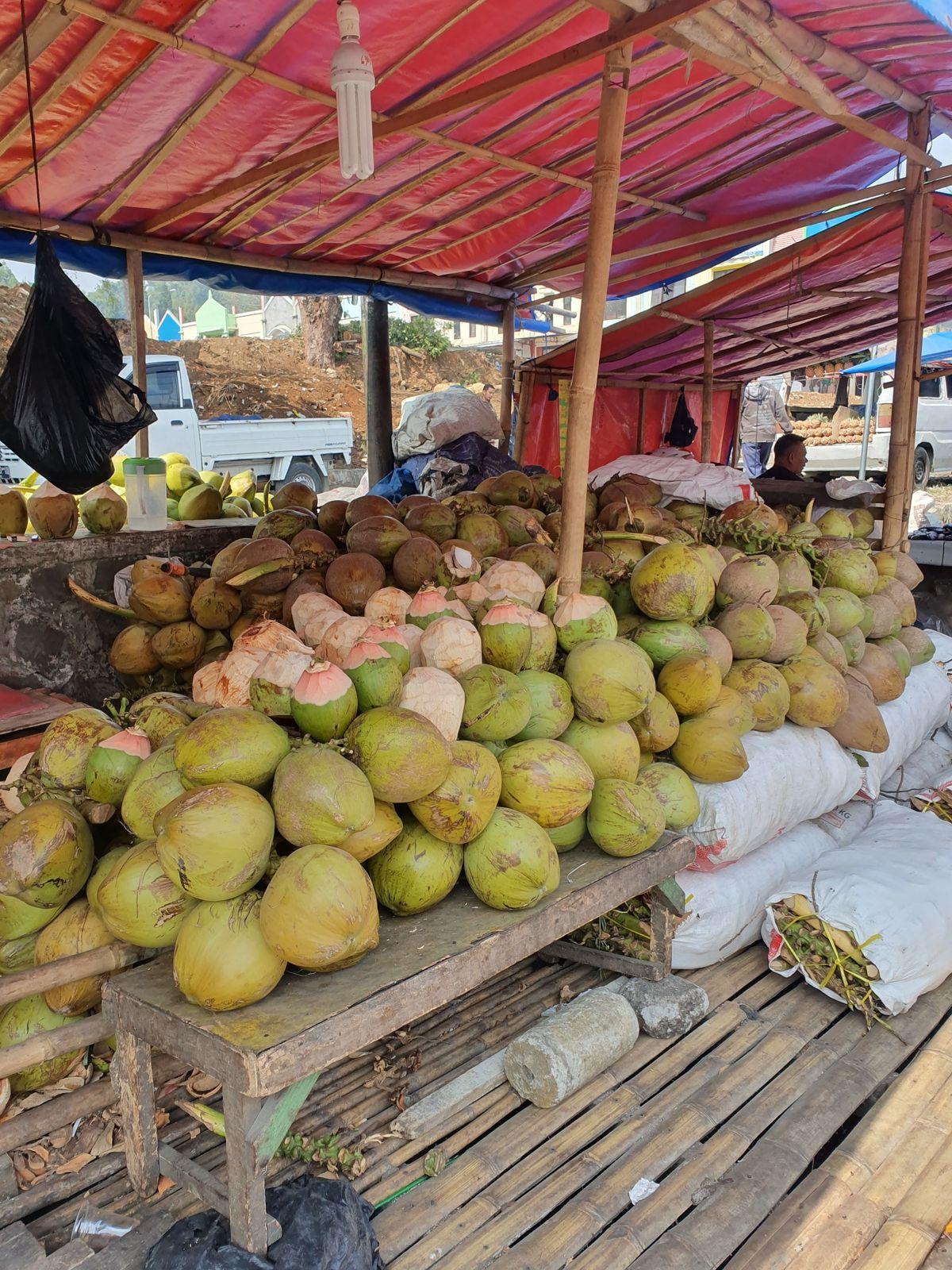 Noix de coco Wulung