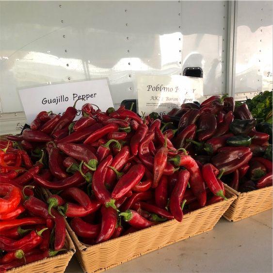 Tørret Guajillo Chile Peppers